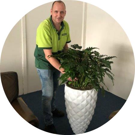 Kantoorplanten Breda verzorgen