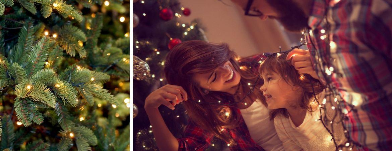 Kerstdecoratie koopt u bij GroenRijk Schalk Prinsenbeek, nabij Breda