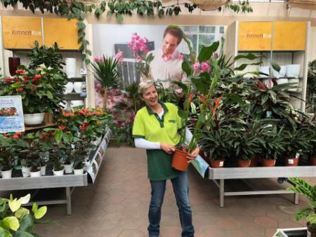 Veelzijdig tuincentrum bij Breda GroenRijk