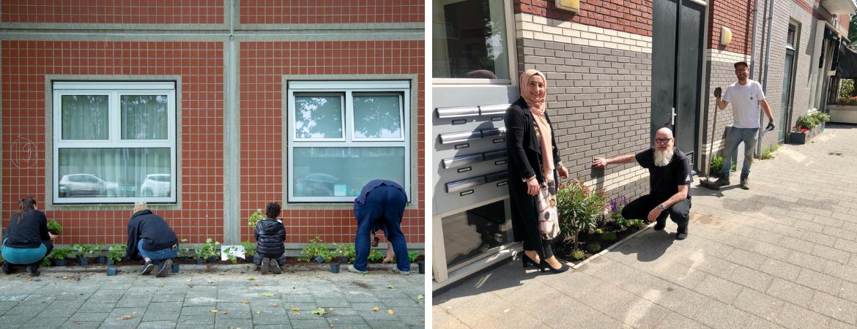 GroenRijk Schalk Prinsenbeek | NK Tegelwippen