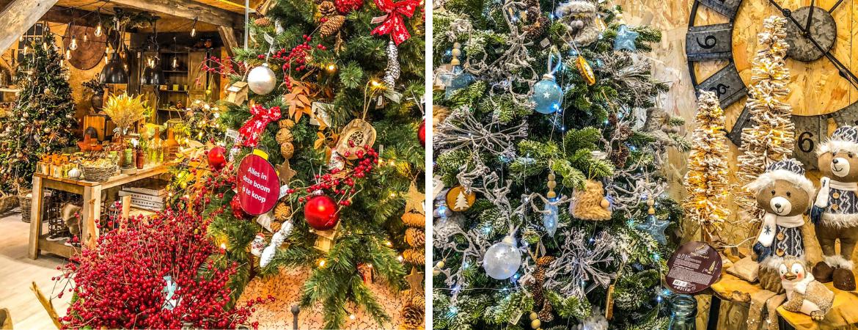 Tips om de kerstboom langer gezond te houden | GroenRijk Prinsenbeek