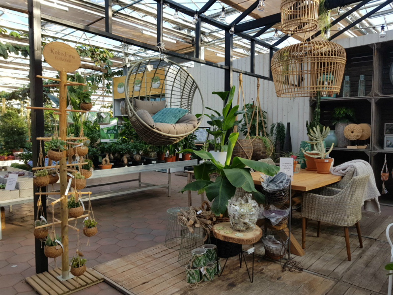 Tuincentrum breda kamerplanten en accessoires
